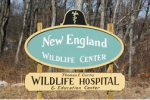 NEWC front sign