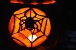 spiderhalloween500pix